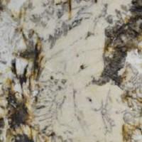 crema delicatus